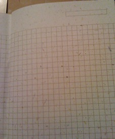 Grid Journal Pages
