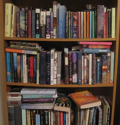 Burgeoning Bookcase