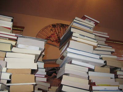 Ant's Eye View of the Book Pile