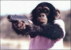 monkey-with-gun